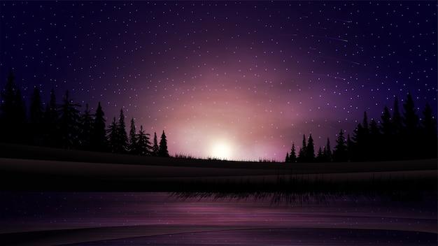 Закат на озере. летний пейзаж с закатом над горизонтом, сосновым лесом и озером