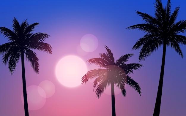 Закат или восход солнца пейзаж с пальмами в силуэт