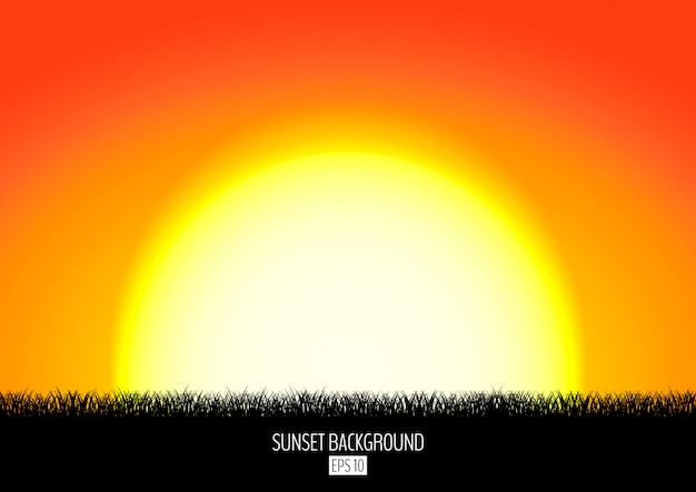 Sunset or sunrise background with black grass silhouette. burning sun sets over the horizon.