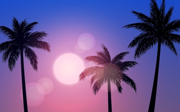 Sunset or sunrise landscape with palm trees in silhouette