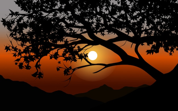 Sunset view through tree