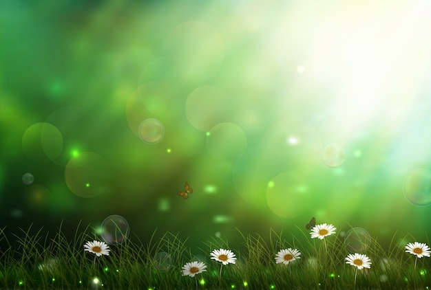 Sunshine through the forest