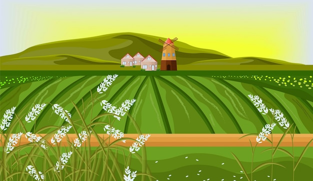Райс полей фермы пейзаж вектор. иллюстрации в стиле sunshine