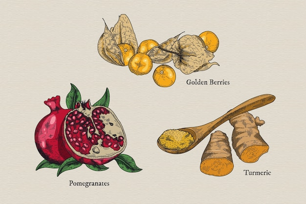 Superfood fruits illustration collection