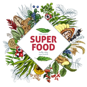 Superfood rhombus frame banner, full color realistic sketch