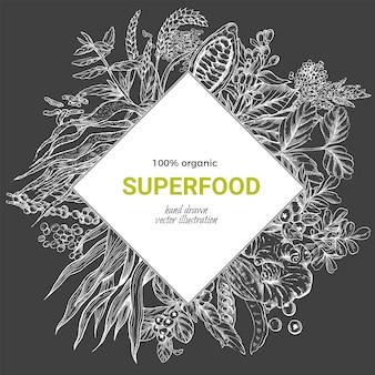 Superfood rhombus frame banner, realistic sketch