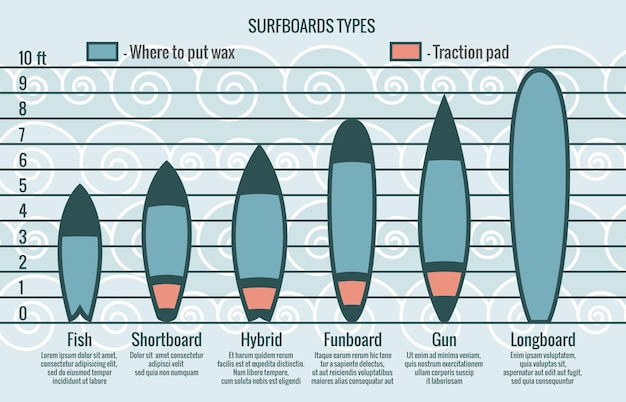 Surfboards types infographic template