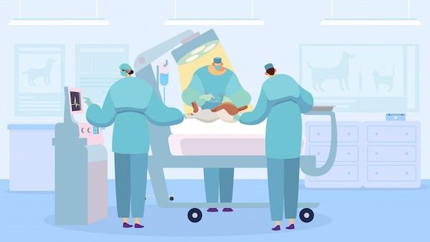 操作を実行する外科医、獣医クリニック、イラストの犬
