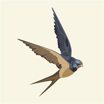 Swallow (bird) in flight