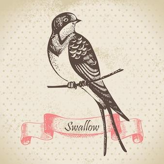ツバメ鳥、手描きイラスト
