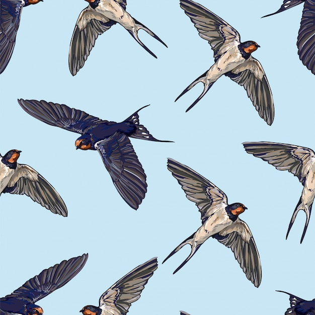 Swallow seamless pattern. birds flying