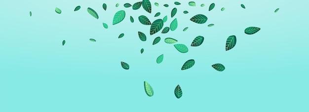 Болотная листва весенний вектор панорамный синий фон шаблон. шаблон движения зелени. лаймовые листья летят завод. брошюра по экологии листьев.