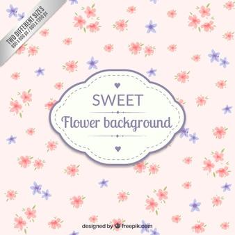 Sweet flower background