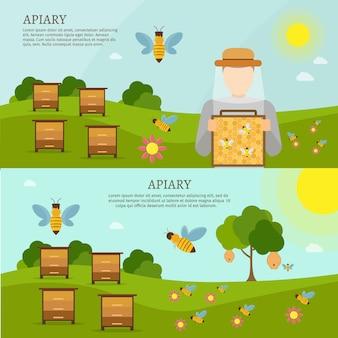 Сладкая медоносная пчела набор векторных плоских иллюстраций