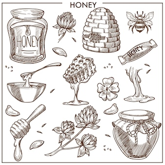 Sweet honey product collection