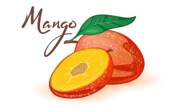 甘い完熟マンゴーの半分と半分。葉と熱帯のエキゾチックな石の果実。白のレシピ、料理本、パッキング、市場ラベル、メニューの漫画イラスト。自然で健康な製品。