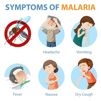 Symptoms of malaria cartoon style infographic