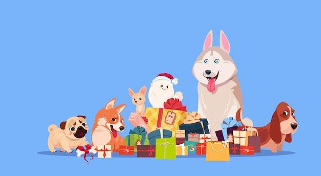 Группа милых собак, сидя у стека подарков synbol нового года 2018 праздничный подарок украшения