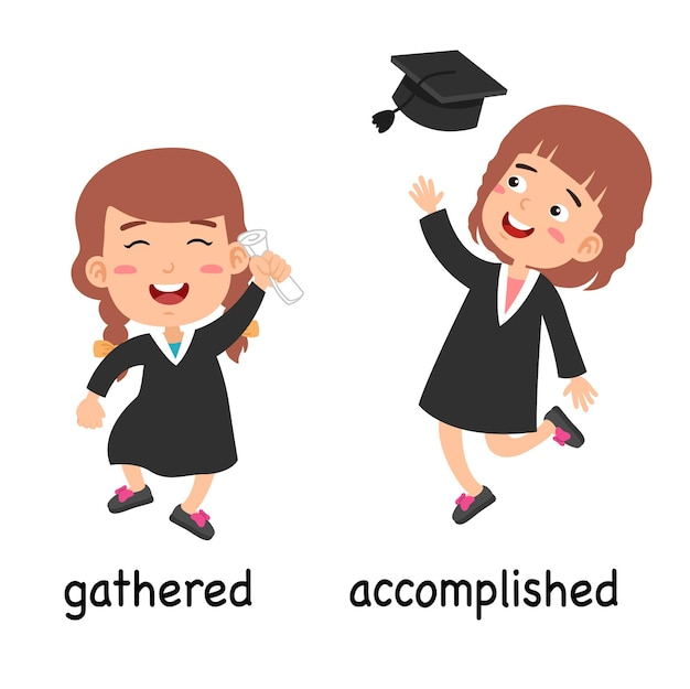 Synonyms gathered and accomplished vector illustration