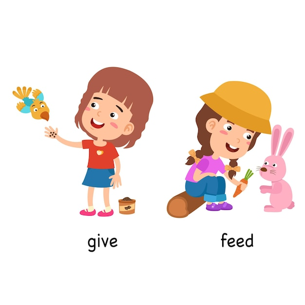 Synonyms give and feed vector illustration