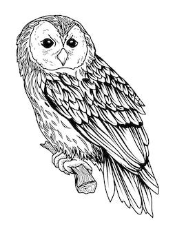 タトゥーとtシャツデザインフクロウ手描きプレミアム