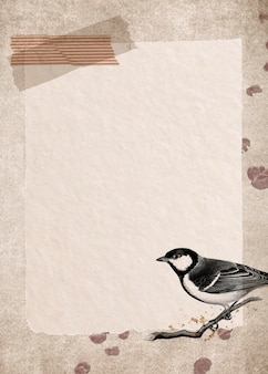 Talgoxe great tit on a grunge brown background