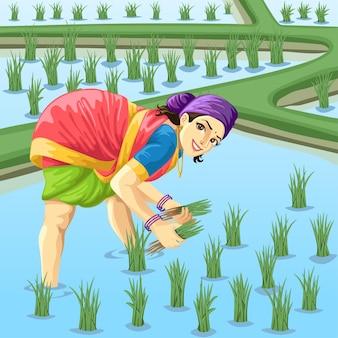 패 디 필드에서 일하는 타밀어 여자 농부