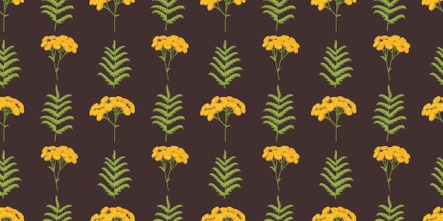 タンジー。黄色い花を持つ植物のパターン。暗い背景の植物画。