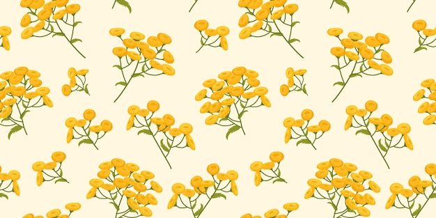 Tansy pattern of plants with yellow flowers botanical illustration