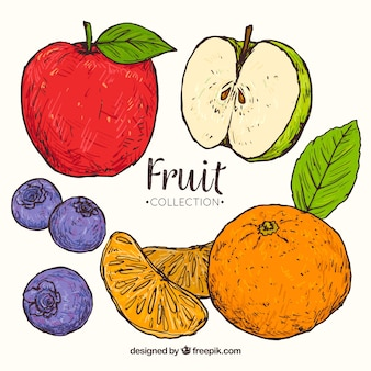 美味しい果物を手描きのスタイルで