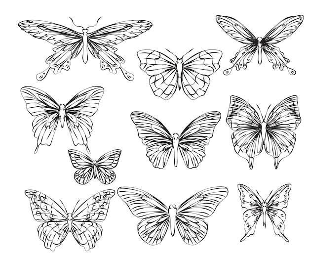 Тату-арт бабочка рука рисунок и эскиз, изолированные на белом фоне