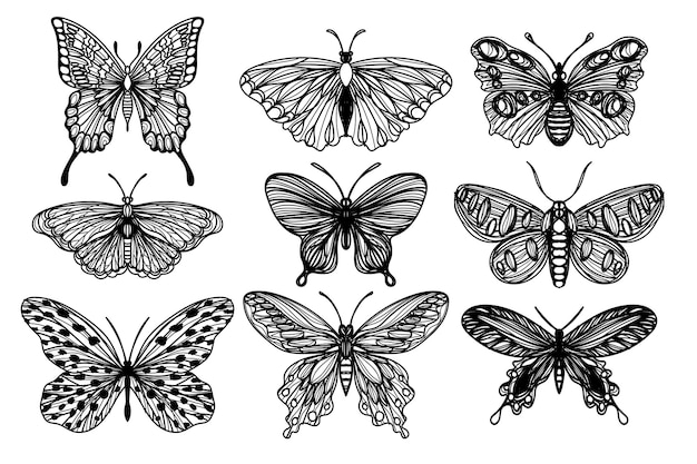 Tattoo art set butterfly sketch black and white