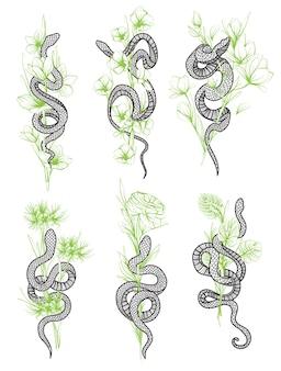 문신 예술 뱀과 꽃 그리기 및 스케치