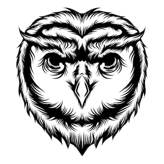 The tattoo ideas of animation the owl's head