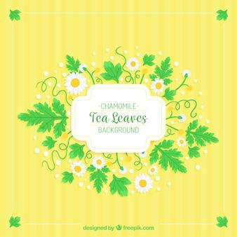 Чайный фон с листьями