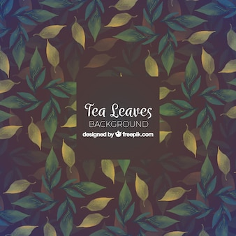 Tea background with leaves