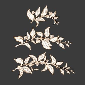 Набор чайной ветки. рамка природы. художественный травяной дизайн