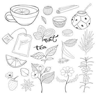 Tea hand drawn isolated collection