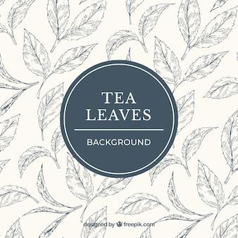 Фон из листьев чая в ручном стиле