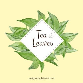 Фон из чайных листьев в акварельном стиле