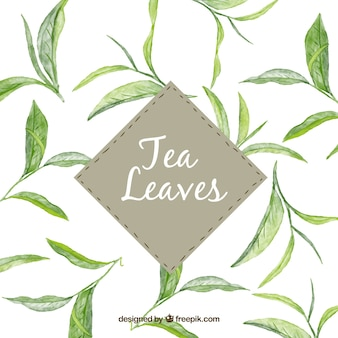 Tea leaves background in watercolor style