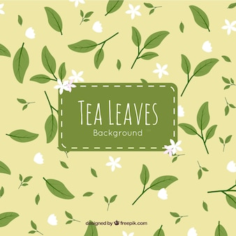 Tea leaves background with flowers