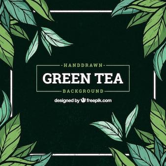 Фон из чайных листьев с растениями