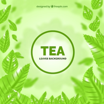 Tea leaves background with realistic style