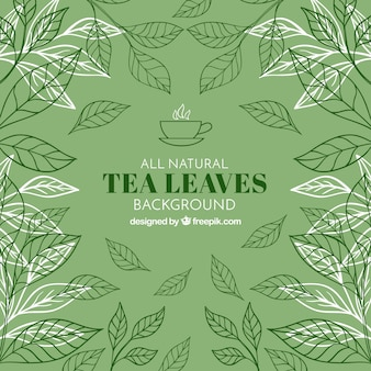 Tea leaves background with vegetation