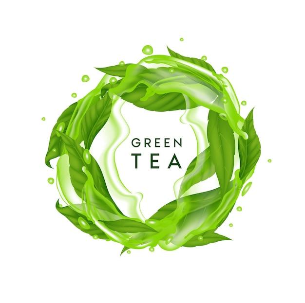 Чайные листья свежие зеленые с брызгами воды индийский цейлонский или китайский зеленый чай со стеблями