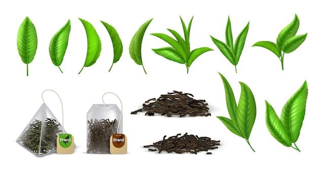 茶葉。リアルな緑茶と乾燥茶葉、広告用のデザイン要素、枝の葉とバッグ。ベクトルセットイラスト湾曲した芳香族緑の葉が白で隔離