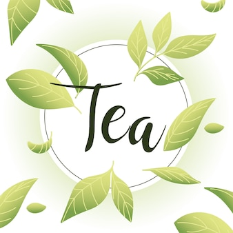 葉とシールスタンプのお茶、朝食、飲み物、熱い磁器セラミック英語、招待状のテーマのイラストを飲む