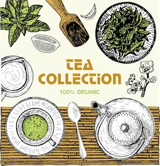 Эмблема магазин чая, баннер с рисованной чайных листьев. чайный эскиз векторные иллюстрации. дизайн карты. плакат для чайного домика. набор рисованной. гравированный стиль.