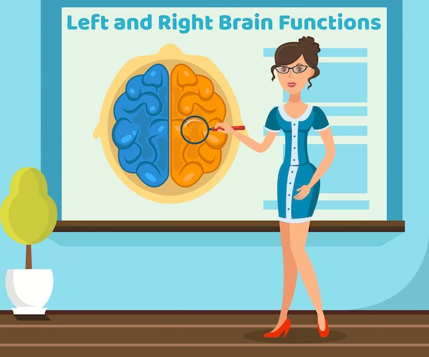Teacher explaining brain function illustration